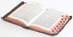 Bible_Isaiah
